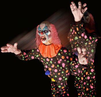 clown peek a boo - CPT407