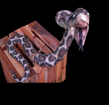 Snake Crate - SN101