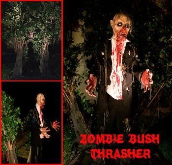 ZOMBIE BUSH THRASHER - ZBT201