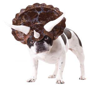 Triceratops Dog Costume - Pet Large