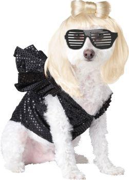 Pop Sensation Dog Costume - Pet Large