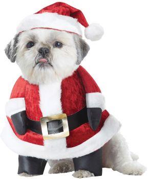 Santa Paws Dog Costume - Pet Medium