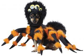 Spider Pup Dog Costume - Pet Medium