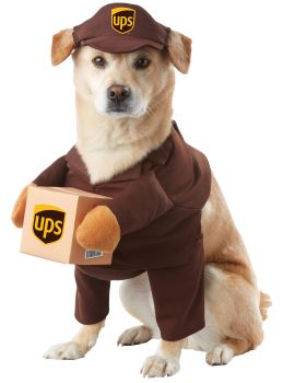 UPS Pal Dog Costume - Pet Medium