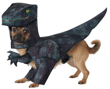 Pupasaurus Rex Dog Costume - Pet Medium