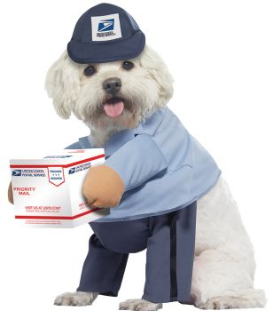 US Mail Carrier Dog Costume - Pet Large