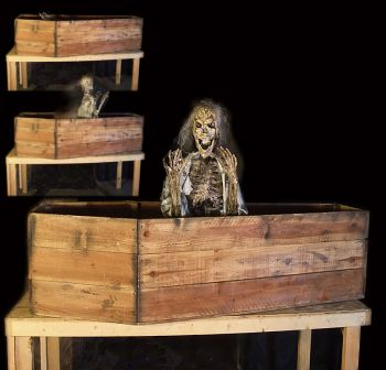 COFFIN SKELLY SIT UP