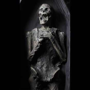 Skeleton corpse prop