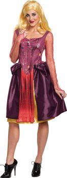 Women's Sarah Classic Costume - Adult M (8 - 10)