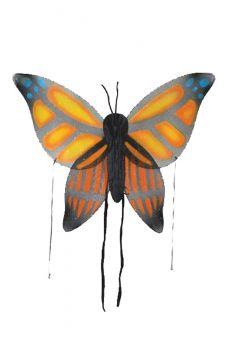 Butterfly Wings - Orange