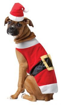 Santa Dog Costume - Pet X-Large