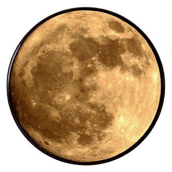 i-Zombie Moon