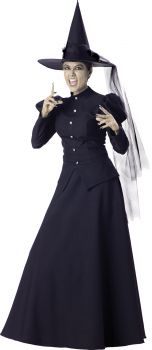 Women's Witch Costume - Adult L (12 - 14)