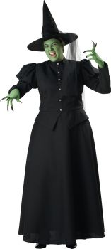 Women's Plus Size Witch Costume - Adult 2X (20 - 22)