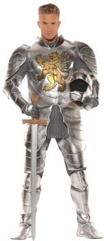 Knight In Shining Armour Adult