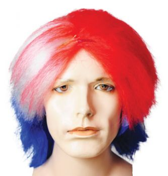 Special Bargain Patriotic Wig