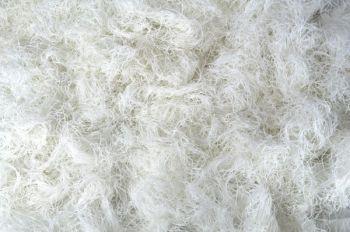 Moss Cloth: White
