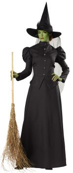 Women's Witch Classic Deluxe Costume - Adult Small