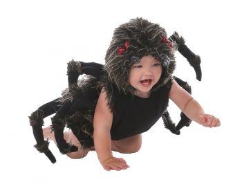 Tarantula Talan - Toddler (12 - 18M)