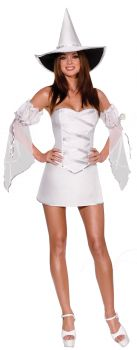 Women's Which Witch Costume - Adult S (2 - 6)