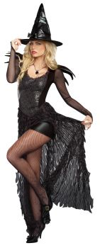 Wicked Me Costume - Adult XL (14 - 16)
