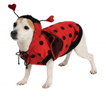 Lady Bug Pet Costume - Pet L