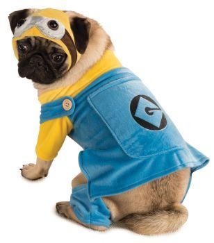 Minion Pet Costume - Despicable Me 2 - Pet L