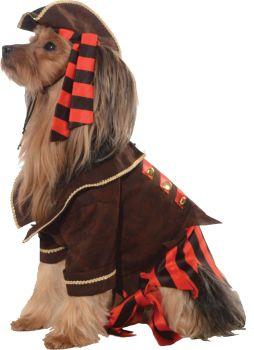 Pirate Boy Pet Costume - Pet L