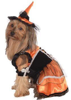 Orange Witch Pet Costume - Pet S