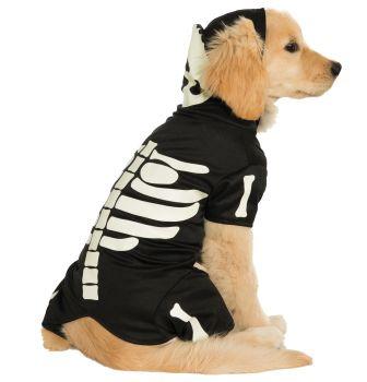 Glow-In-The-Dark Skeleton Pet Costume - Pet L
