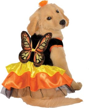 Butterfly Pet Costume - Pet S