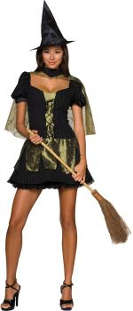 Women's Sexy Wicked Witch Costume - Wizard Of Oz - Adult Medium
