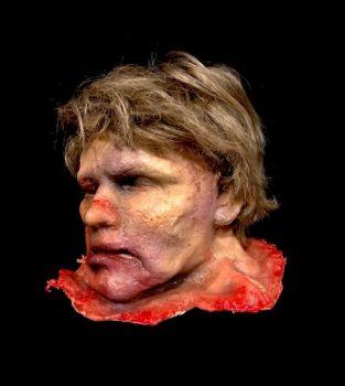 Body Parts Severed Head