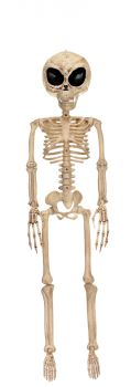 ALIEN SKELETON BONE COLOR 37IN