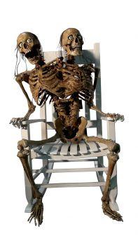Siamese Talkin' - Rockin' Skeleton