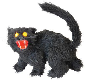 Black Sonic Cat