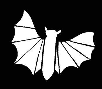 Stencil Bat Stainless