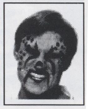Stencil Kit Leopard