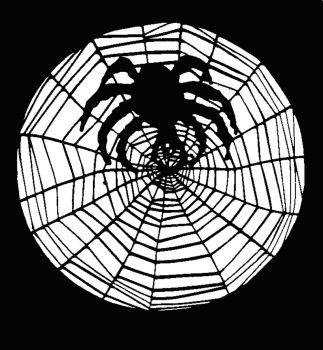 Stencil Spider W Web Stainless