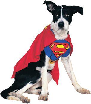 Superman Pet Costume - Pet XL