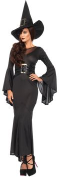 Women's Sexy Wickedly Witch Costume - Adult S/M